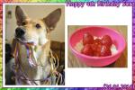 Sora---4th-Birthday